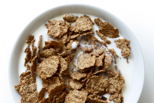 Breakfast cereal with protein milk